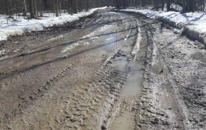 Road Update